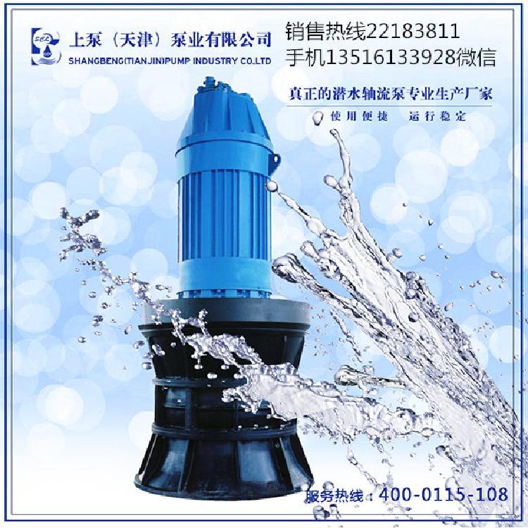 广西玉林管道式潜水轴流泵
