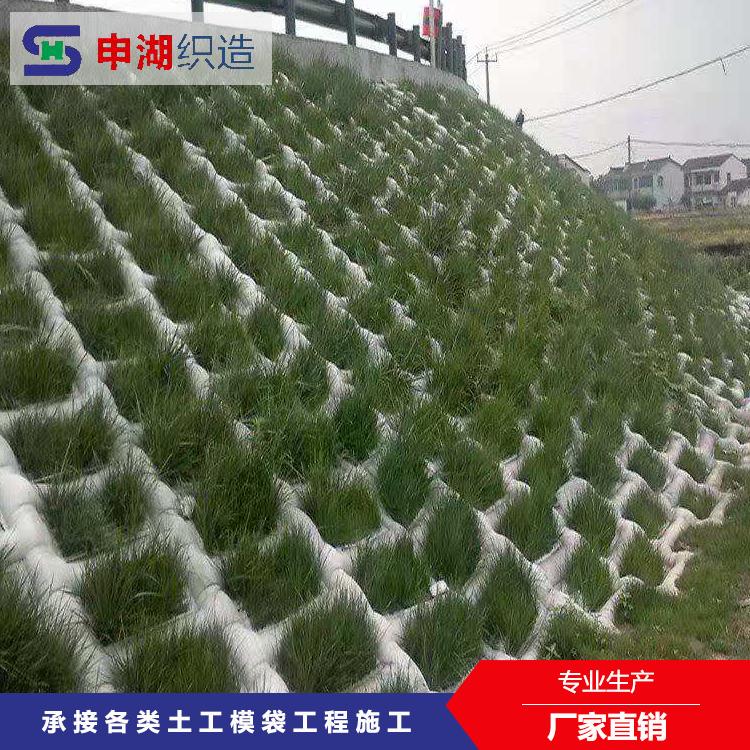 植草模袋生态种草模袋 生态袋 河道坡道专用模袋 申湖织造 可定制