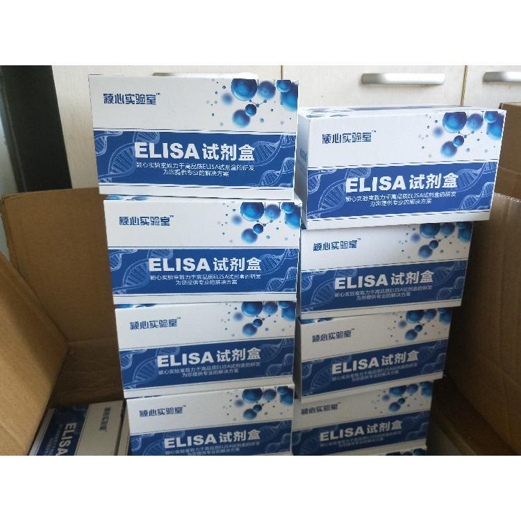 去甲腎上腺素(NE)elisa試劑盒
