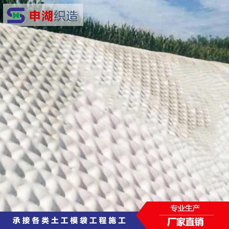 申湖织造 滤点模袋 高强度 耐腐蚀 厂家直销