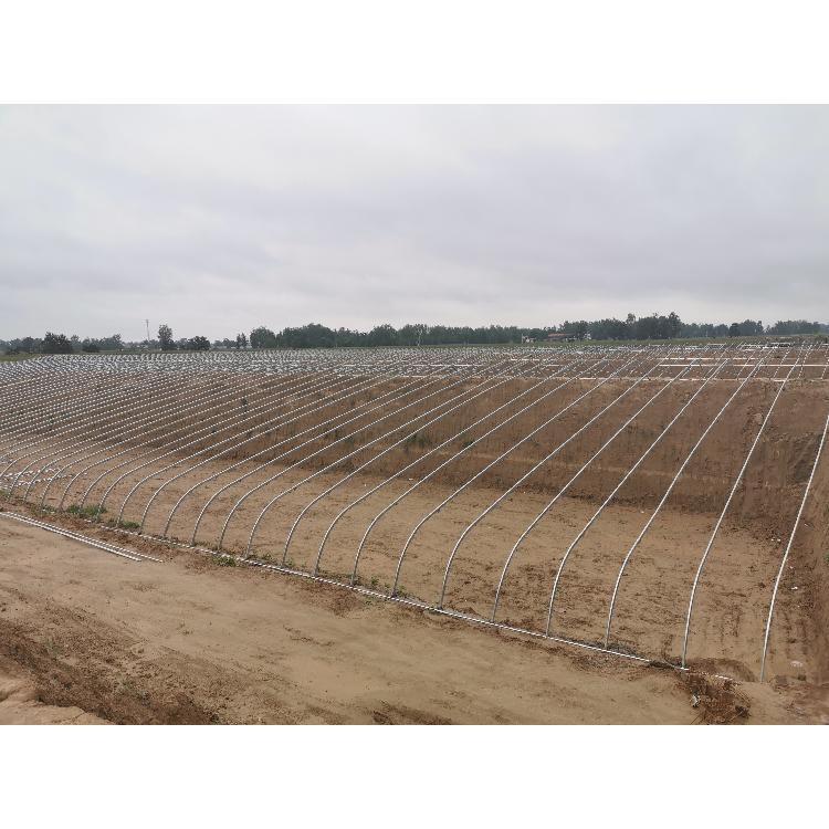 薄膜温室大棚-安装建设-果蔬种植大棚造价-满天星农业科技-质量可靠