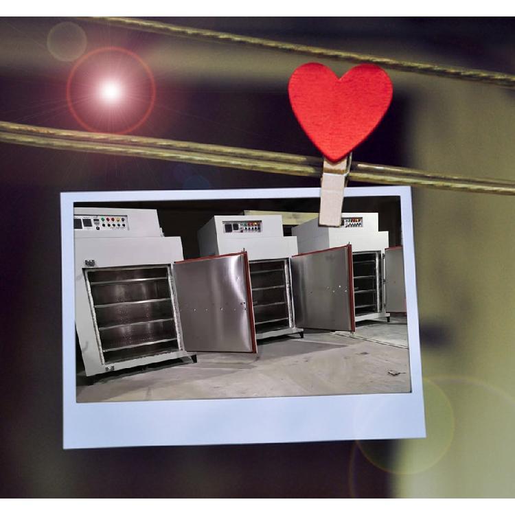 苏州台硕电热专业生产加工_隔板烘箱_可按照尺寸定制_工业烘箱生产厂家