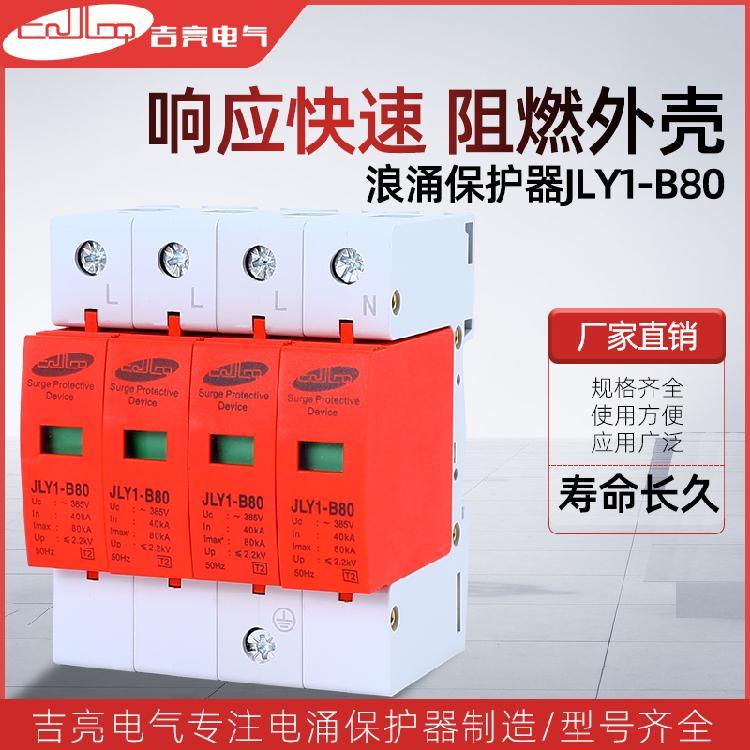 吉亮电器JLY1-B80 电源浪涌保护器浪涌保护器 避雷防雷器 厂家直销规格齐全