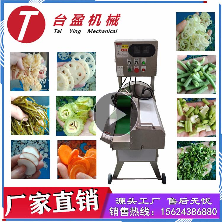 台盈机械 酸菜切丝机 全国供应 切丝机 多功能切菜机