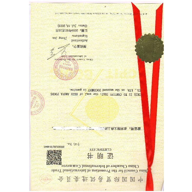 埃及检验报告大使馆认证
