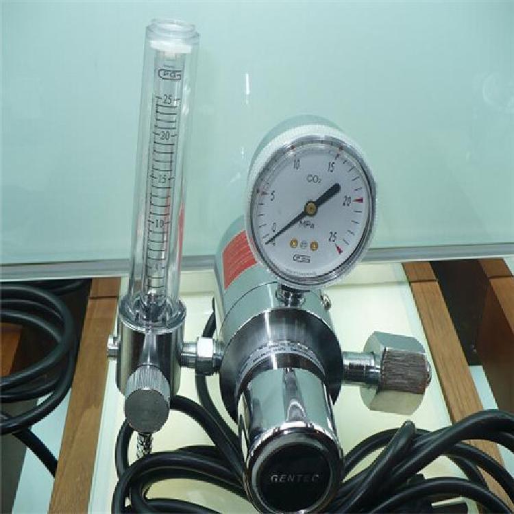 GENTEC 美国捷锐394C-25L电加热二氧化碳减压器36V 110V 220V