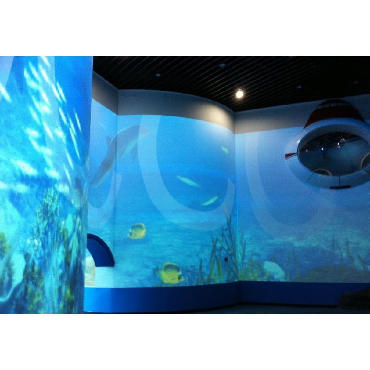 WSK世界园艺博览会3D屏幕漆 等各种投影漆施工一条龙