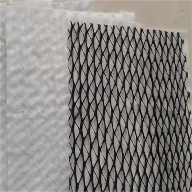 泰安诺联三维复合排水网厂家山东泰安厂家常年生产复合排水网质优价廉欢迎选购
