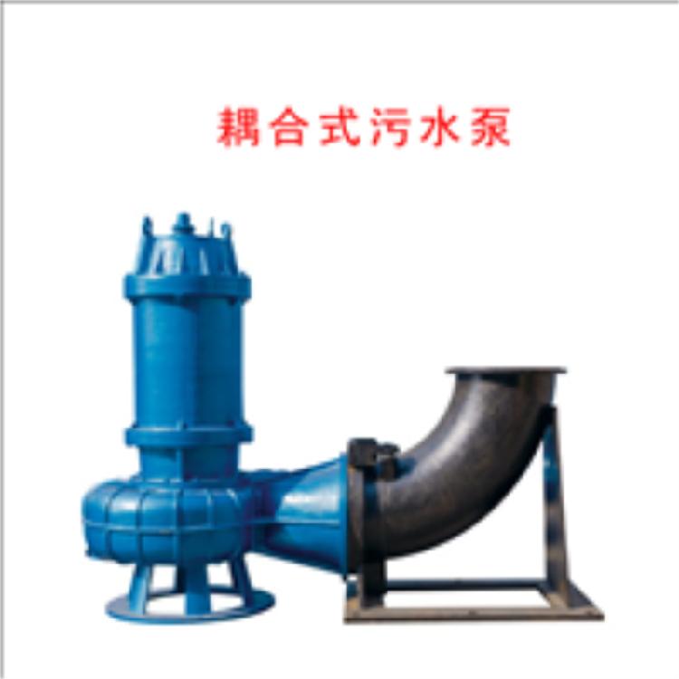 排污泵 专利浮筒式污水泵 便捷式安装水泵 临时应急排潜污泵