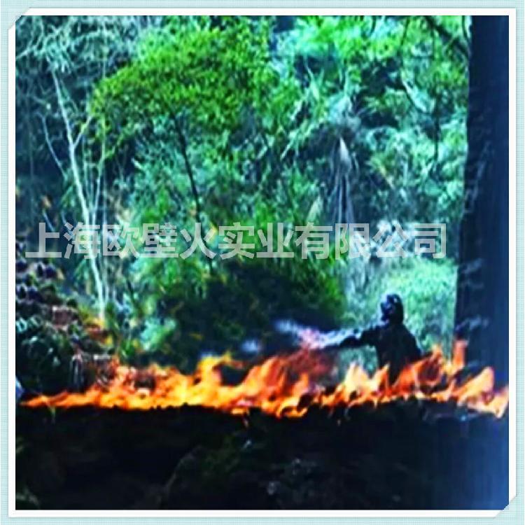 【上海欧壁火】精品壁炉定制服务 伏羲电壁炉 3d雾化壁炉嵌入式仿真 精美壁炉仿真火焰