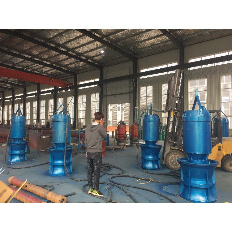 哪里的潜水轴流泵质量好 潜水轴流泵厂家排名