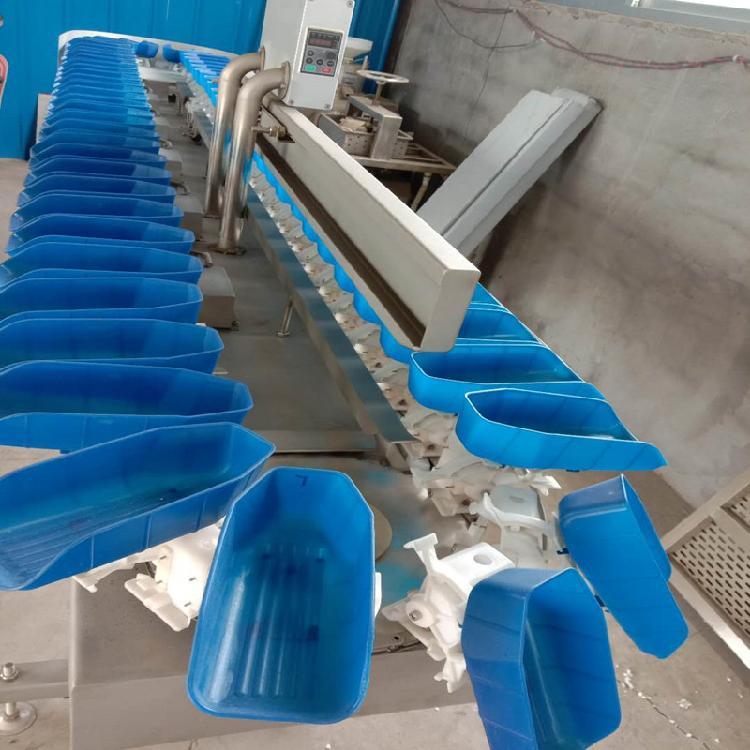 中鸿厂家直供 白条鸡重量分拣机海产品称重分选机 自动称重系统