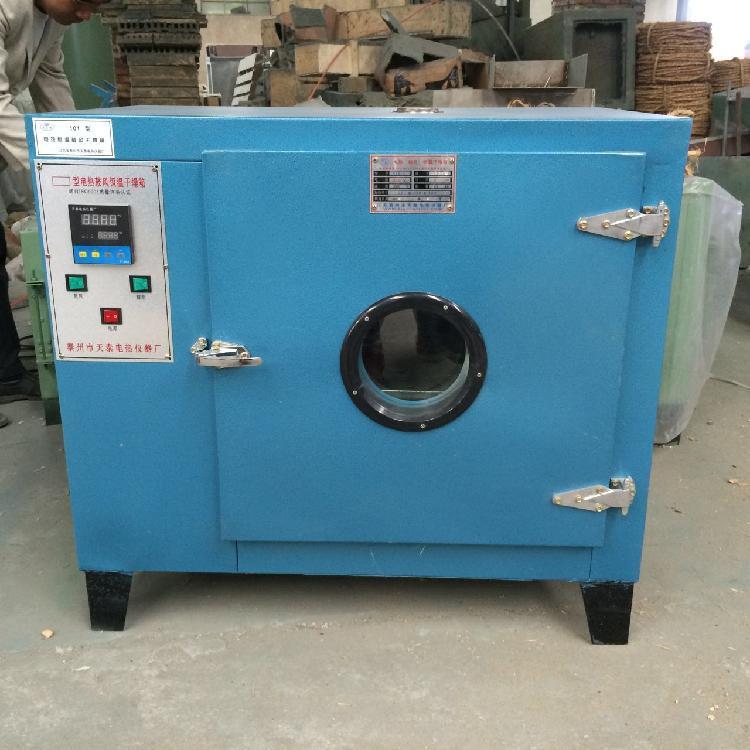 101鼓风干燥烘箱 工业油漆烘烘箱 恒温干燥箱 鼓风循环干燥箱