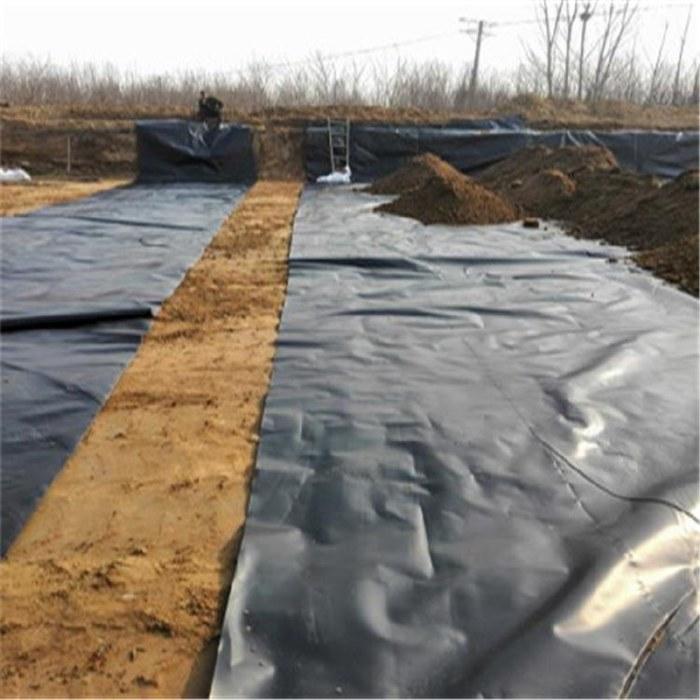 0.6毫米0.7毫米0.8毫米0.9毫米1.0毫米水库防渗土工膜_厂家直销,黑色防水藕池复合土工膜