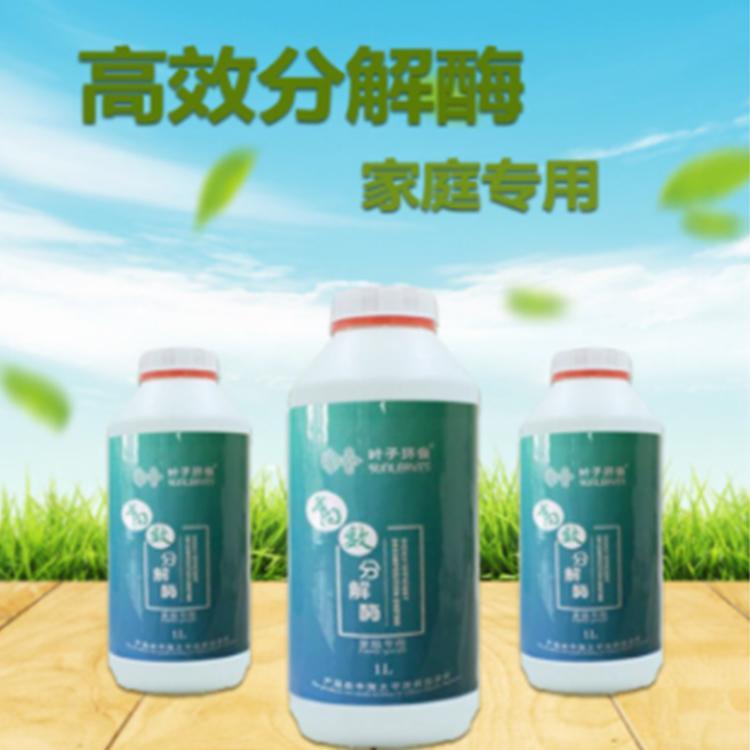 除甲醛找全众叶子环保 上门除甲醛