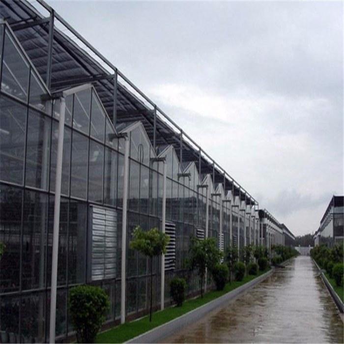 安装温室大棚遮阳系统 山东龙鼎温室公司 智能大棚建造设计