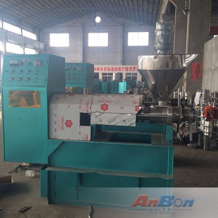 南瓜仁榨油机  冷热两用榨油机生产线 大型螺旋榨油机