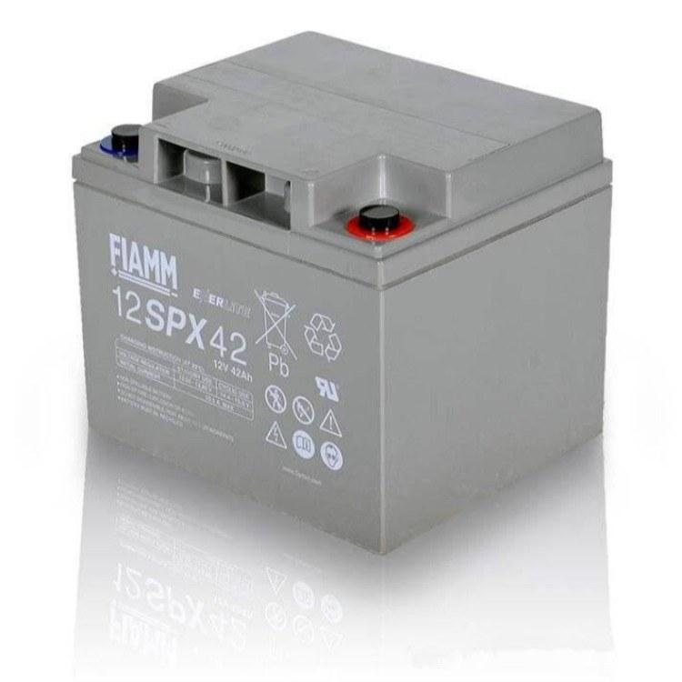 非凡蓄电池12V42AH FIAMM  12SP42   UPSEPS 免维护