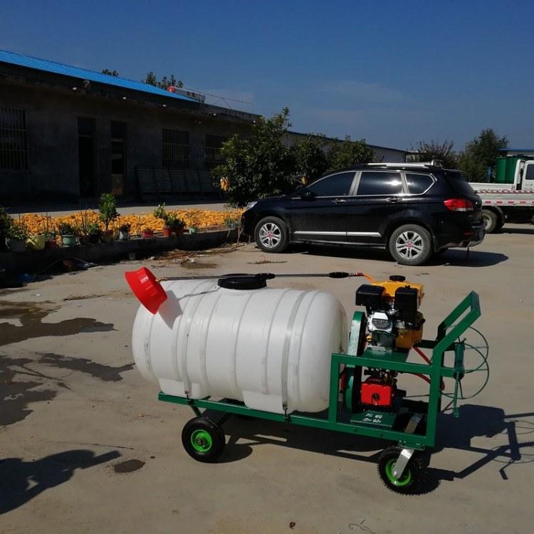手推式杀虫打药机 远程喷雾打药机 植保型农用药水机