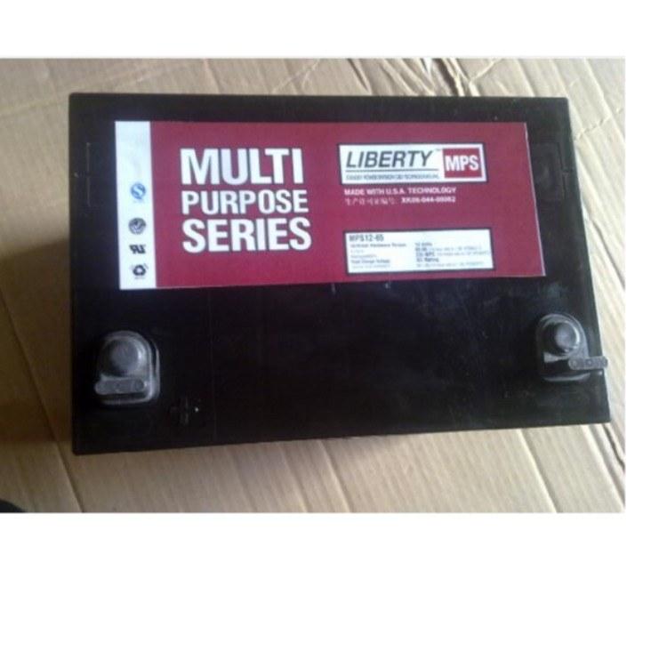 大力神蓄电池12V65AH     UPS电源直流屏 /太阳能用  /应急电源