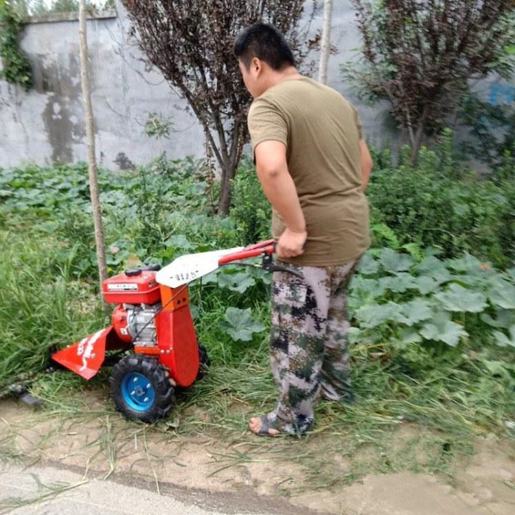 小型果园除草机 高效汽油动力剪草机 林业专用剪草机