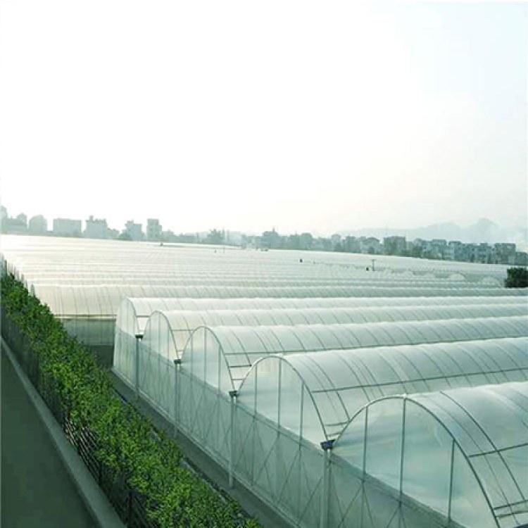 专业智能连栋薄膜温室大棚工程技术指导-满天星农业科技