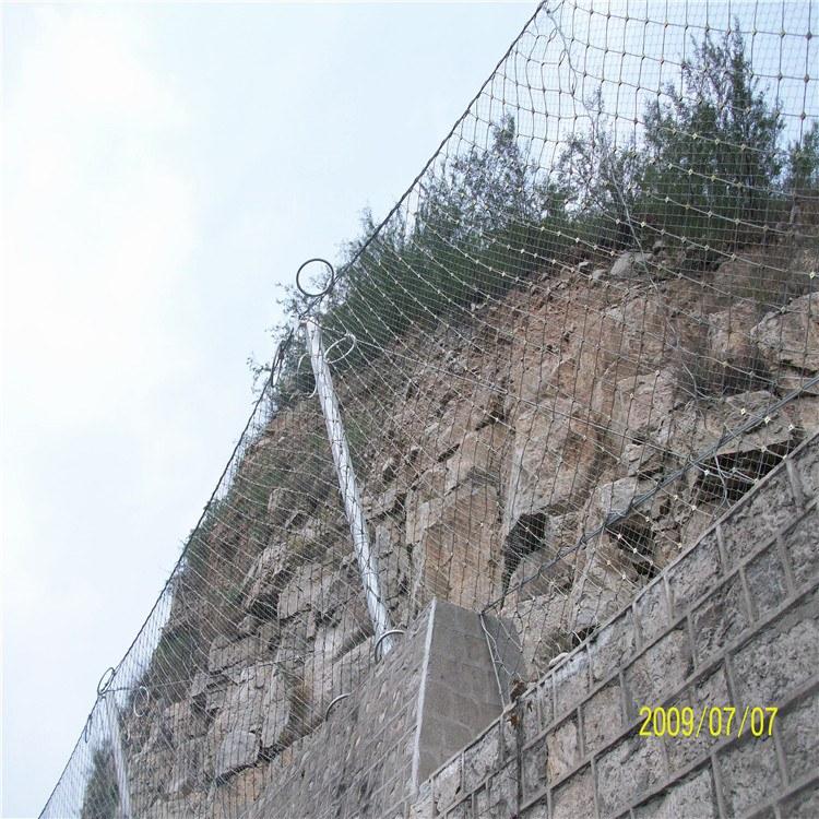 国隆厂家专业定制 坡面防护网 生态防护网 钢丝绳网
