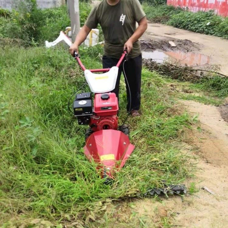 皇竹草打浆机 玉米秸秆打草机 家用青贮饲料打浆机