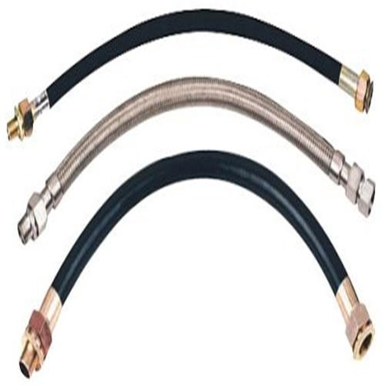专业出售防爆挠性连接管 dn25耐腐蚀防爆连接管 质量优良
