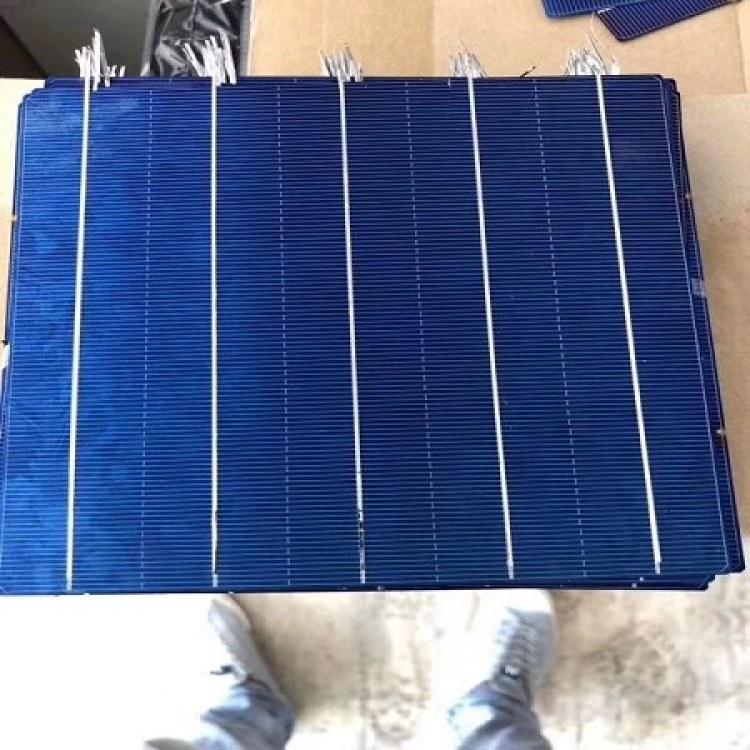 全国高价回收156多晶太阳能电池片