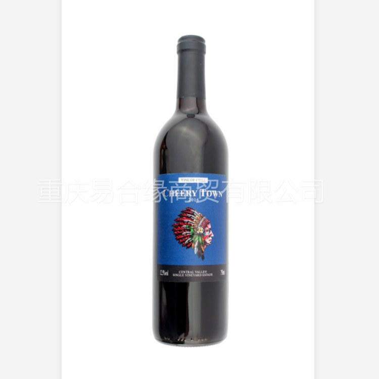 智利印第安葡萄酒750ml赤霞珠干红葡萄酒