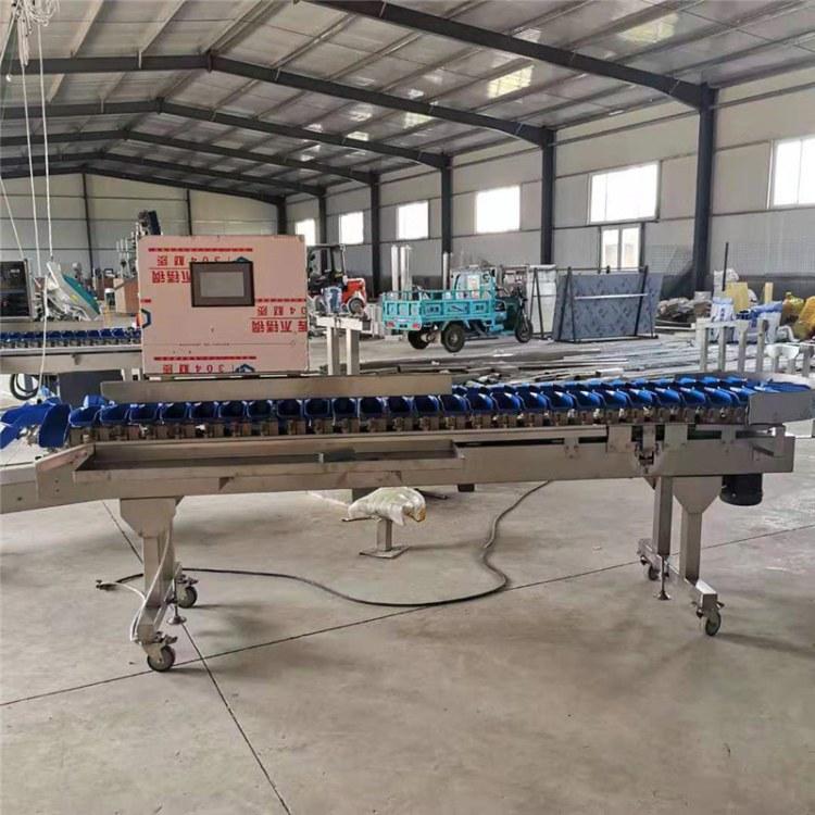 牡蛎自动分选机 海参重量分级机 转盘式称重筛选机 小龙虾分捡机