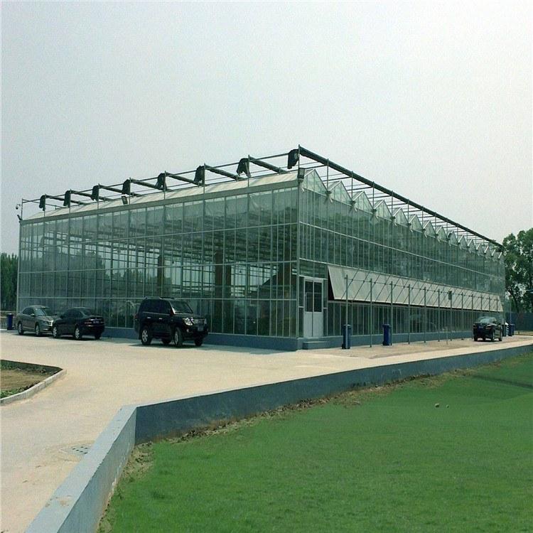 温室大棚设计安装 内外遮阳网 龙鼎温室骨架加工 一平米价格