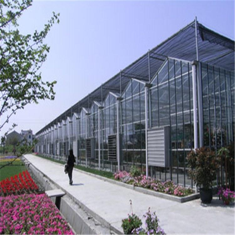 连栋阳光板温室  山西温室公司  定制优质大棚  骨架生产厂家