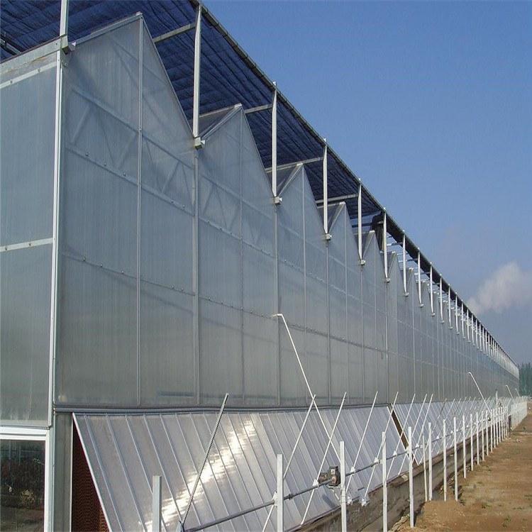 阳光板温室工程  内蒙古温室公司  加工定制大棚  厂家报价