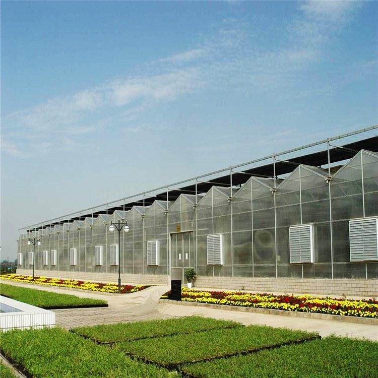 连栋阳光板温室 河南温室大棚公司 定制优质大棚