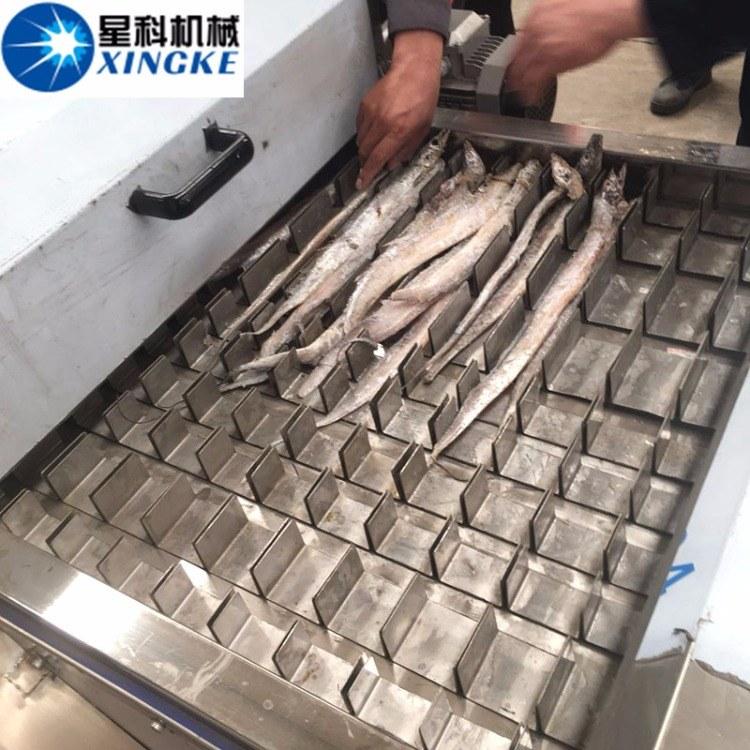 现货秒发刀鱼切段机 连续切段式切鱼设备 带鱼切块机