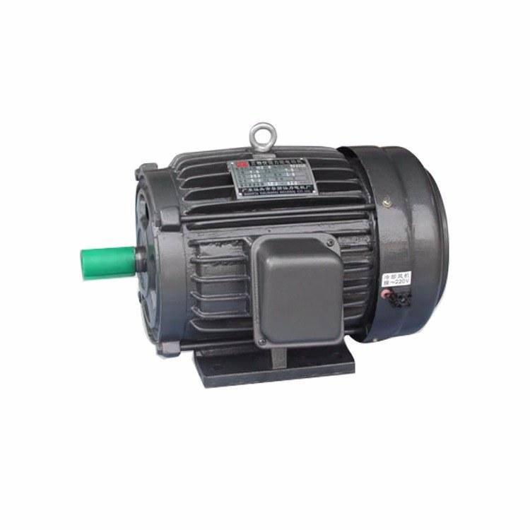 YLJ100三相交流力矩电机电动机力矩马达 卧式25KG-4/6