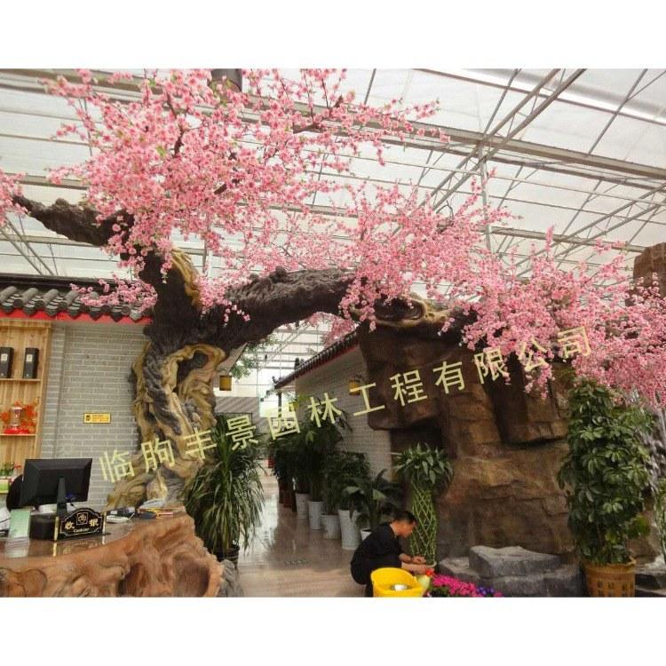 丰景园林 仿真树 新款仿真榕树桃花树 室内装饰商场落地塑料绿植假树棕榈树 生态大门