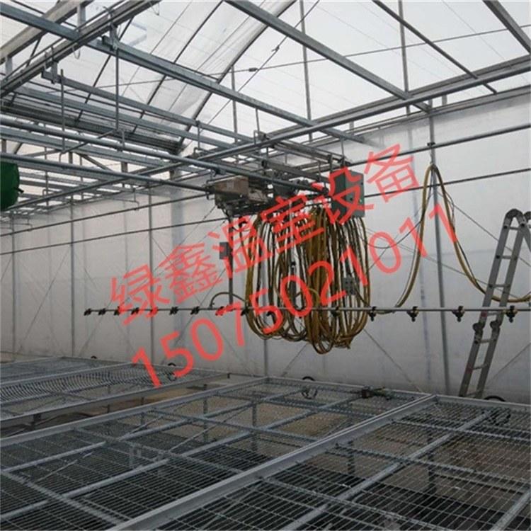 绿智鑫15075021011 温室大棚育苗花卉喷灌机全自动洒水车