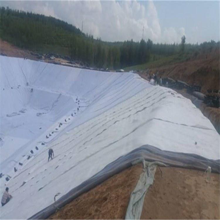 泰安腾路生产三维复合排水网 6.0mm排水网 土工网 垃圾场地下导排水系统