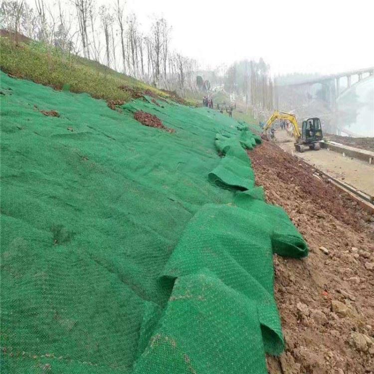 三维植被网护坡植草绿化土工网垫 2层EM2三层EM3/EM4/EM5带拉伸网