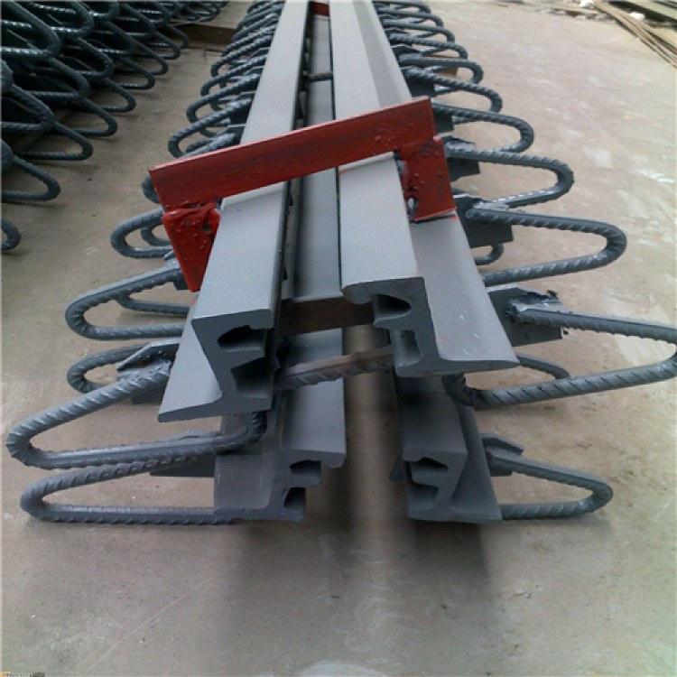公路桥梁伸缩缝40 60 80 160型 SCB梳齿板伸缩缝