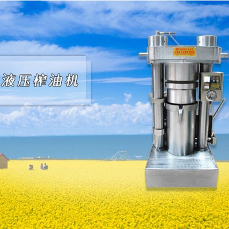 南阳乐发大型榨油机 全自动省事省力 商用多功能 芝麻香油榨油机