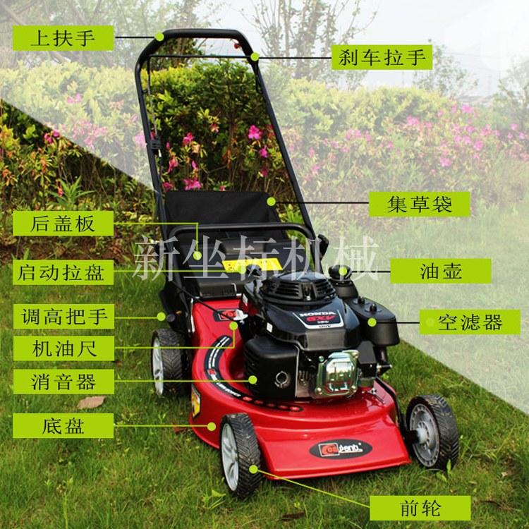 起草皮机  草坪修剪机  自走式草坪机