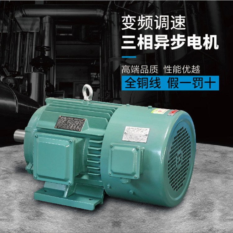 江苏高科 变频电机 YVF2变频调速三相异步电动机