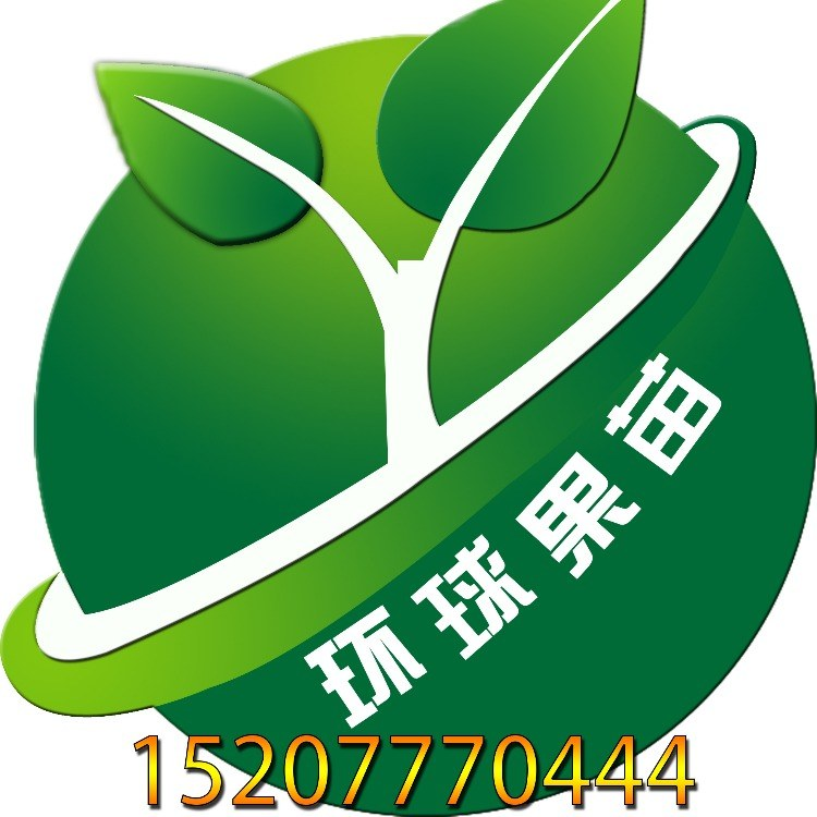 供应泰国红宝石柚越南青柚红宝石蜜柚广西蜜柚新品种