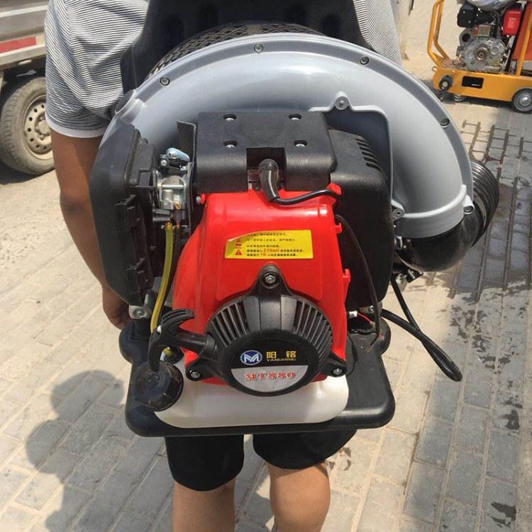 马路汽油式吹风机 背负式路面吹叶机 程煤便携式吹风机
