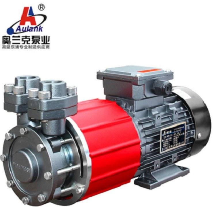 奥兰克MDW系列高温磁力泵 汽车电池检测泵 新能源检测泵
