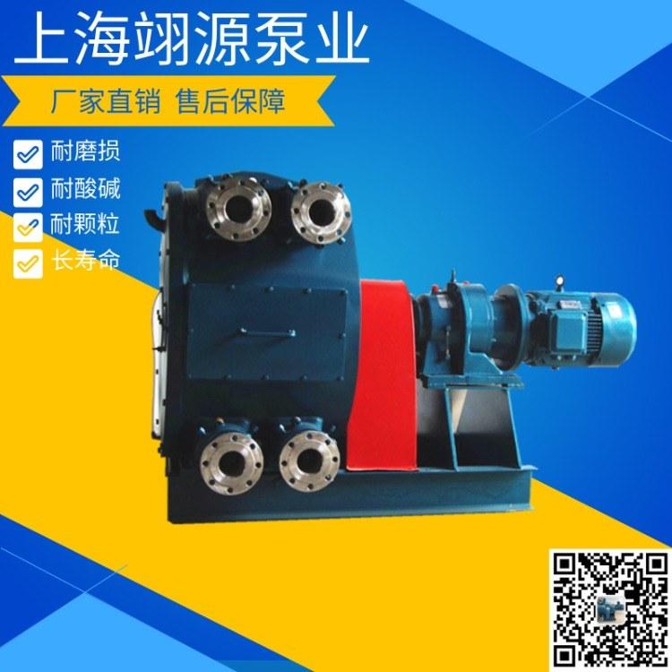 双管软管泵 工业双泵头大流量自吸泵 砂浆泵挤压泵 规格齐全 质量有保障